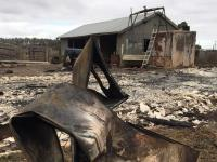 Insurance news | Bushfires Melbourne