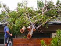 NSW residents poorly prepared for looming storm season: NRMA